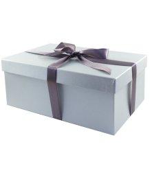 Подарочная коробка 21х14 см серебряная