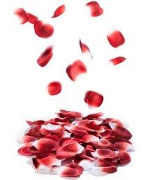 Лепестки роз с запахом Bijoux Indiscrets Rose Petals Explosion